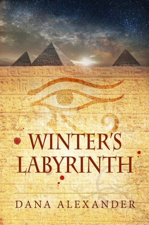 KINDLE Winter_s Labyrinth 13 October 2017