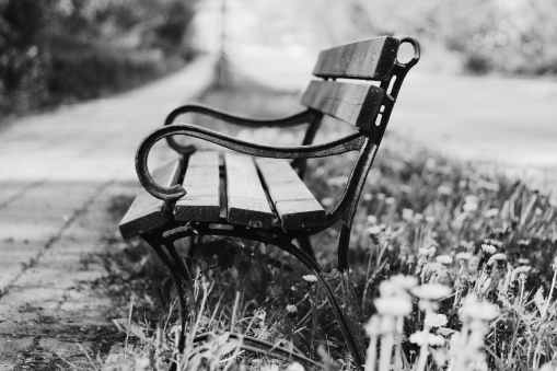 grayscale photography of brown and black bench